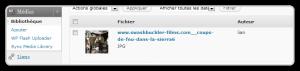 flash-uploader-03