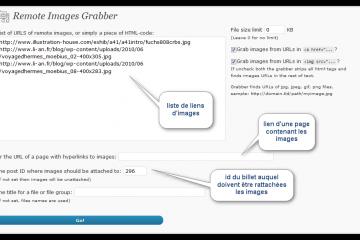 Remote Image Grabber