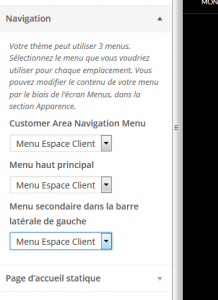 custom-client-area-06
