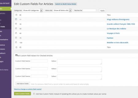 custom-field-editor02