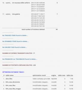 optimize-database-resultat1