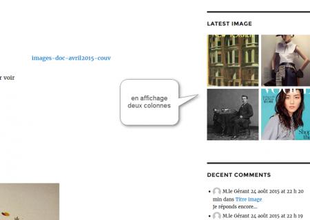 easy-image-display-widget-affiche