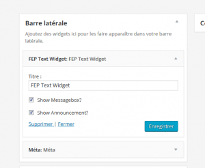 front-end-pm-widget-options