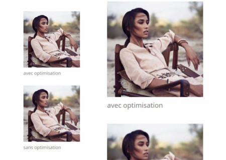 ultimate-optimisation-alauneb