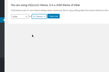 Child Theme Copy Settings