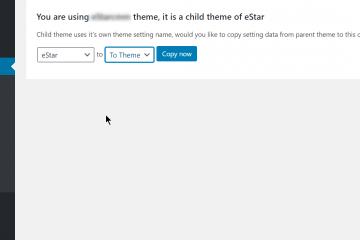 Child Theme Copy Settings